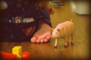 This little piggy went to market...